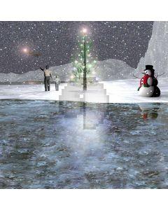 XMAS snow scene Computer Printed Photography Backdrop DGX-25