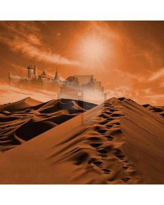 Ups And Downs Dunes Computer Printed Photography Backdrop DGX-470