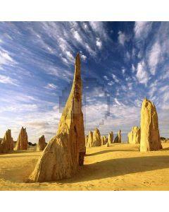 Desert Wind Fossils Computer Printed Photography Backdrop DGX-472