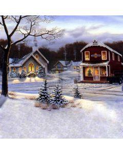 Charming snow scene Computer Printed Photography Backdrop DGX-60