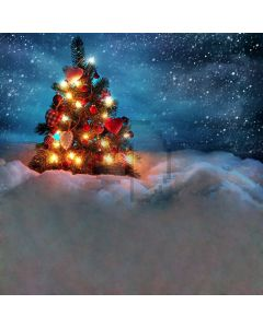 XMAS snow scene Computer Printed Photography Backdrop DGX-75