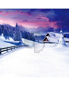 Snow scene Computer Printed Photography Backdrop DT-11-08
