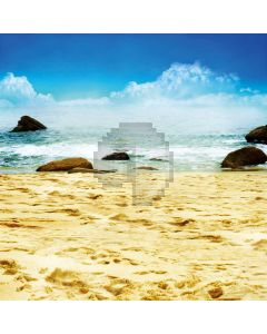 Beach beauty Computer Printed Photography Backdrop DT-11-251