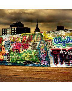 Graffiti wall Computer Printed Photography Backdrop DT-11-266