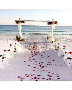 Beach wedding Computer Printed Photography Backdrop DT-11-267