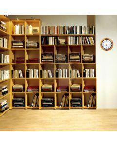 Neatly arranged bookshelf Computer Printed Photography Backdrop DT-12-46
