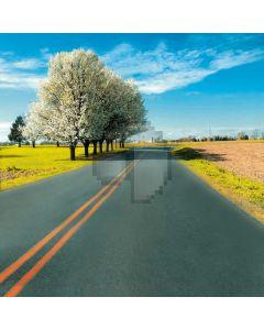 Suburban road big trees Computer Printed Photography Backdrop DT-12-83