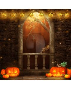 Halloween night Computer Printed Photography Backdrop DT-LP-0024