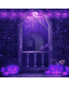 Halloween night Computer Printed Photography Backdrop DT-LP-0037