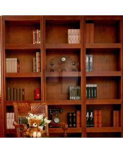 Personality Bookcase  Computer Printed Photography Backdrop DT-LP-0121