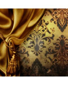 Beautiful curtain Computer Printed Photography Backdrop DT-SL-009