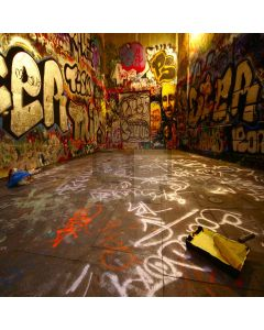 Graffiti wall Computer Printed Photography Backdrop DT-SL-048