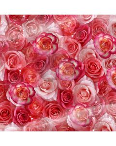 Romantic red roses Computer Printed Photography Backdrop DT-SL-066