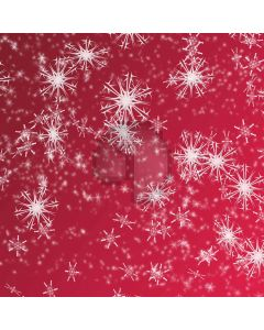 Snowflake patterns Computer Printed Photography Backdrop DT-SL-082