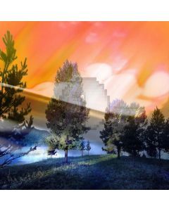 Fantasy forest Computer Printed Photography Backdrop DT-SL-143