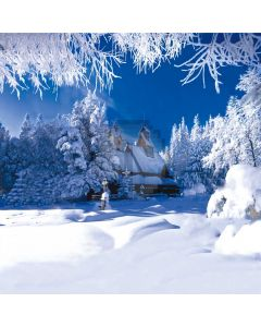 Beautiful snow scene Computer Printed Photography Backdrop DT-XU-0235