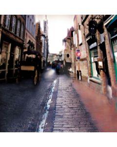 Blue brick path Computer Printed Photography Backdrop DT-XU-0319