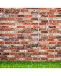 Brick Wall Grass Computer Printed Photography Backdrop HXB-259
