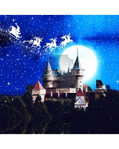 Night Moon Castle Tree Cloud Computer Printed Photography Backdrop HXB-277