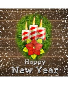 New Year Flower Snowflake Brick Computer Printed Photography Backdrop HXB-418