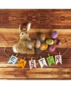 Rabbit Wood Computer Printed Photography Backdrop HXB-862