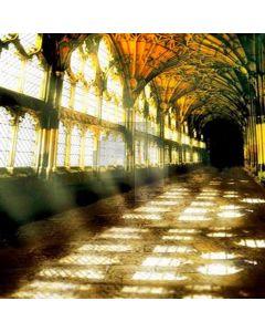 Indoor gallery building Computer Printed Photography Backdrop HY-C-2337
