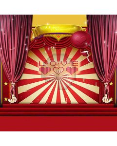 Stage For Valentine Computer Printed Photography Backdrop HY-CM-3569