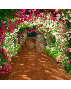 Tunnel With Flower Arch Computer Printed Photography Backdrop HY-CM-4355