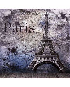 Eiffel Tower Computer Printed Photography Backdrop HY-CM-4605