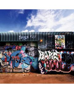 Lovely graffiti wall Computer Printed Photography Backdrop HY-L-368