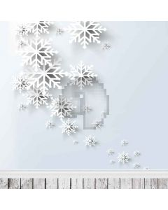 Peculiar Snowflake Computer Printed Photography Backdrop L-805