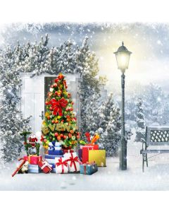 A Sparkling Christmas  Computer Printed Photography Backdrop L-817