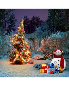 Happy Snowman Computer Printed Photography Backdrop L-826