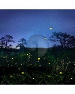 Starry Sky  Computer Printed Photography Backdrop LMG-052