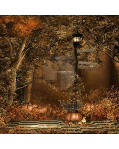 Pumpkins And Light Computer Printed Photography Backdrop LMG-056