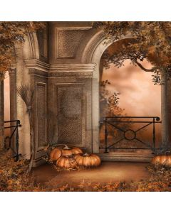 Pumpkins In The Corner Computer Printed Photography Backdrop LMG-060
