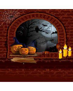 Halloween Wall Computer Printed Photography Backdrop LMG-077
