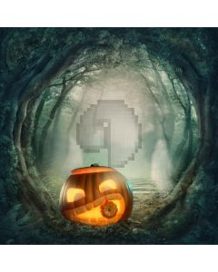 Scary Pumpkin Computer Printed Photography Backdrop LMG-088
