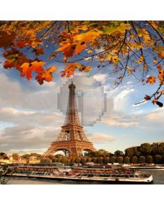 Autumn In Paris Computer Printed Photography Backdrop LMG-104