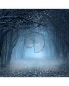 Spooky Forest Computer Printed Photography Backdrop LMG-123