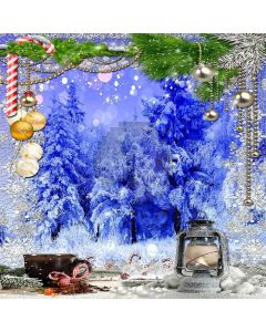 Frozen Christmas Computer Printed Photography Backdrop LMG-198