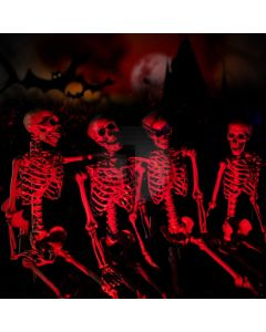 Halloween Ghost Computer Printed Photography Backdrop LMG-825