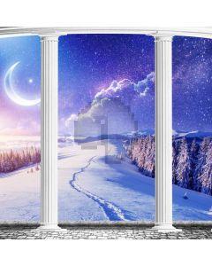 Snow Pillar Cypress Computer Printed Photography Backdrop MSL-175