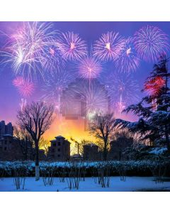 Snow Fireworks House Computer Printed Photography Backdrop MSL-176