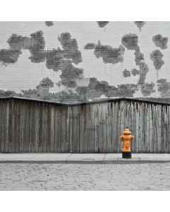 Plain Streetscape Computer Printed Photography Backdrop S-1838