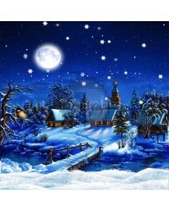 Snowy Night Computer Printed Photography Backdrop S-187