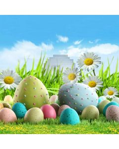 Colored Eggs Computer Printed Photography Backdrop S-219