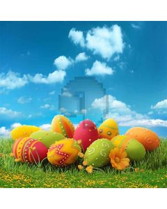 Childlike Painted Eggs  Computer Printed Photography Backdrop S-240