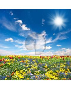 Ocean Of Flowers  Computer Printed Photography Backdrop S-277