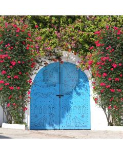 The Door Of Happiness  Computer Printed Photography Backdrop S-279